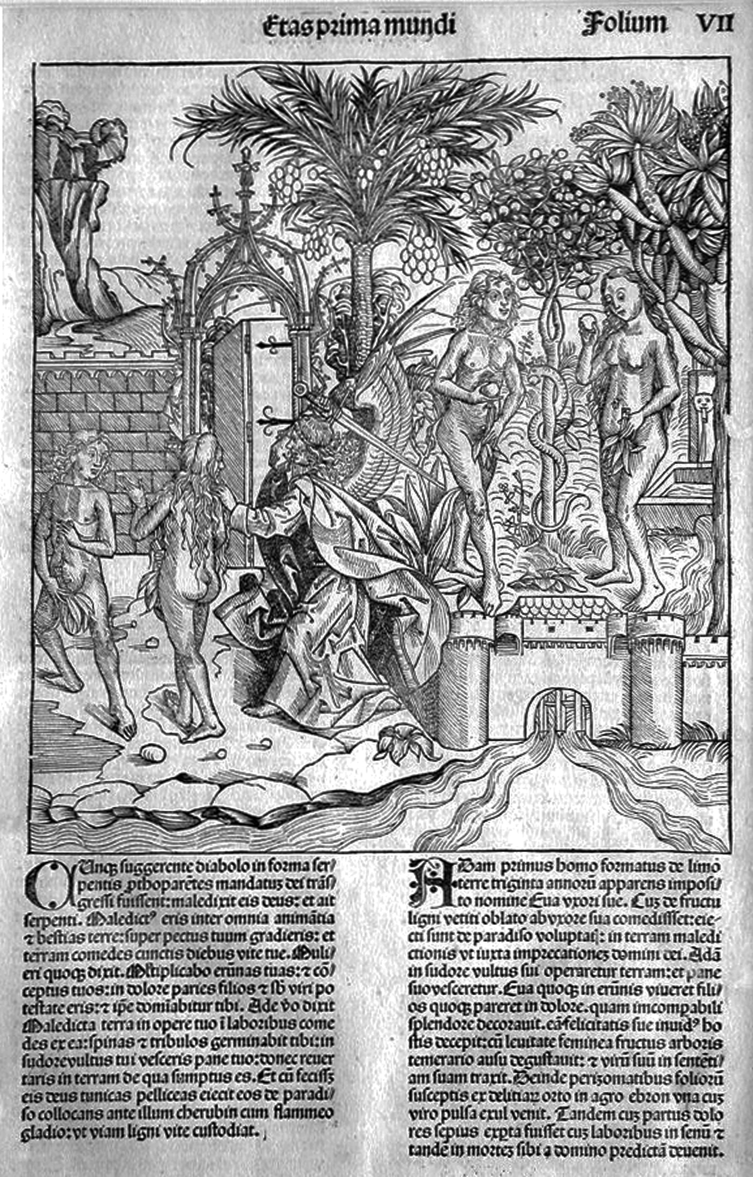 Wohlgemut; Adamo ed Eva