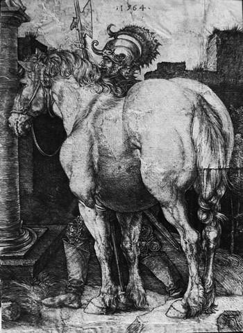 Durer A; Il grande cavallo - 350