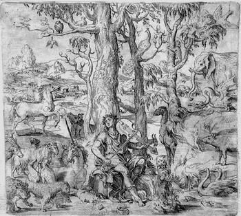 Franco G; Orfeo tra gli animali - 350