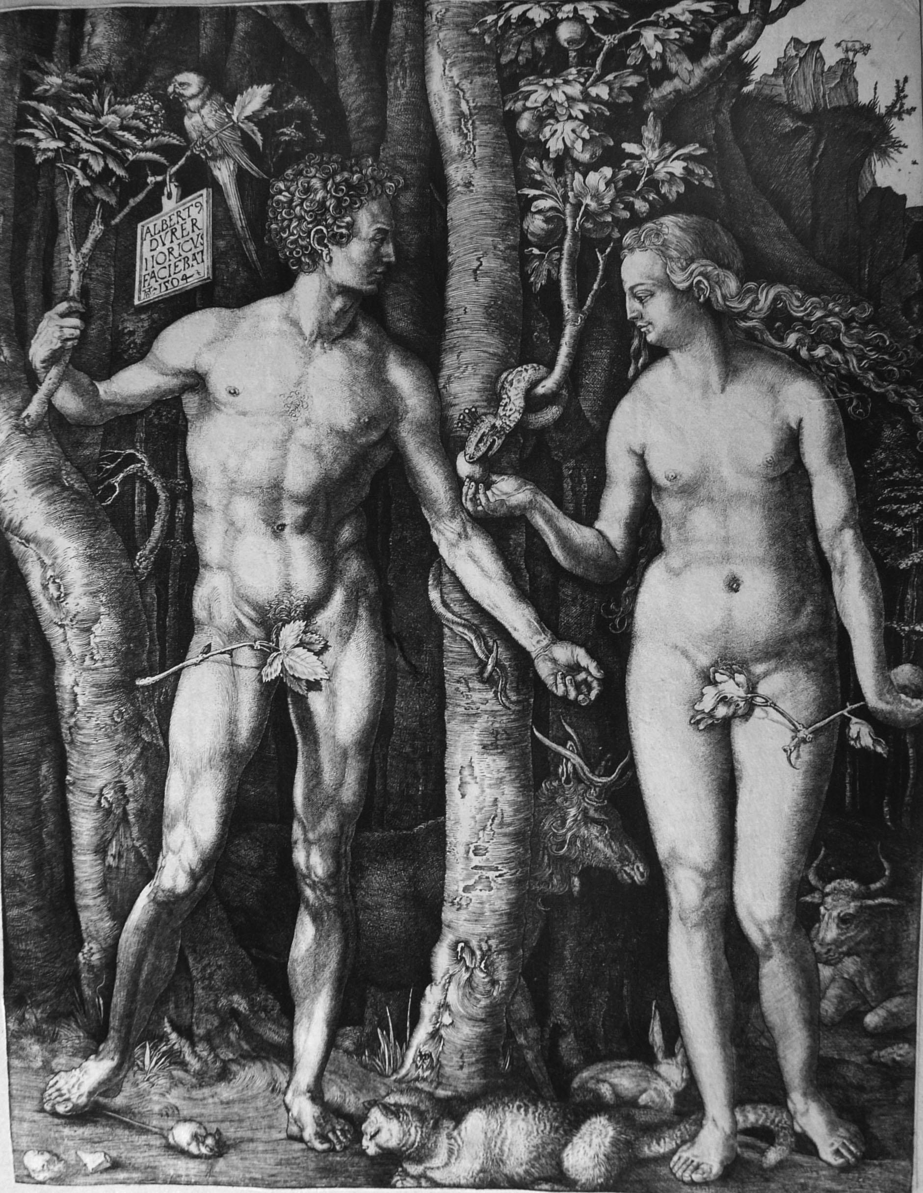 Durer A; Adamo ed Eva