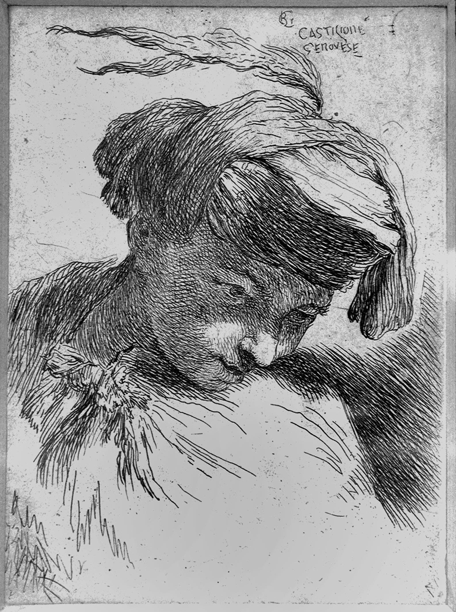 Castiglione GB; Testa di giovane reclinata a sinistra