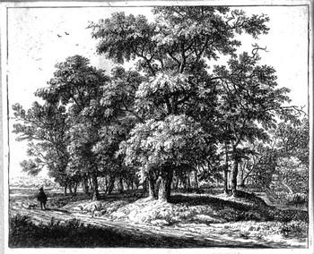 Waterloo A; Il viandante ai margini del bosco - 350